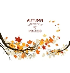 Autumn branches with leaves vector