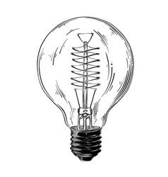 hand drawn sketch of lightbulb in black isolated vector image