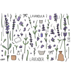 Lavender set composition in doodle style vector
