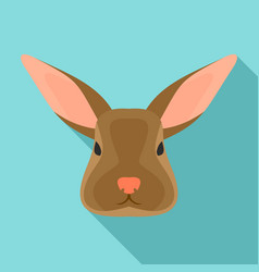 rabbit icon flat style vector image