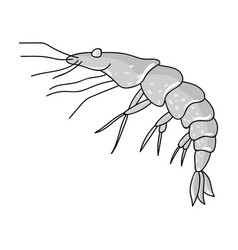 shrimp icon in monochrome style isolated on white vector image