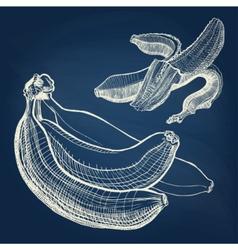 Bananas hand drawn engraving drawing on chalkboard vector image vector image