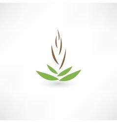 Spa concept icon vector image vector image