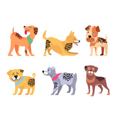 Playful padigree dogs with unusual fur color set vector