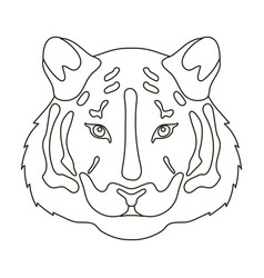 tiger icon in outline style isolated on white vector image vector image
