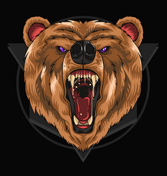 Bear grizzly detail eps vector