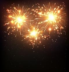 Festive Firework Salute Burst on Black vector image