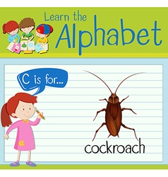 Flashcard letter c is for cockroach vector