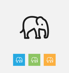 of zoo symbol on elephant vector image