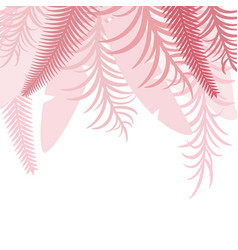 pink top tropical background with palm leaves vector image