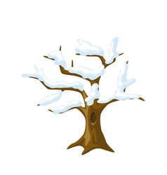 Winter tree with snow on branches seasonal vector