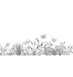 Black and white sketch field flowers and grass vector
