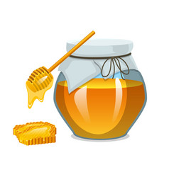 Honey in jar or natural farm product food in vector