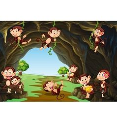 Monkeys living in the cave vector