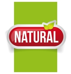 Natural button with leaves vector image