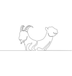 Single continuous line drawing goat and camel vector
