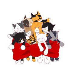 adorable cats bouquet as present vector image