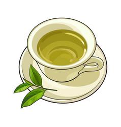 china porcelain cup saucer fresh green tea leaf vector image vector image