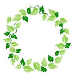 green leaf circle vector image