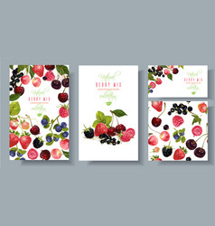 berry mix banners set vector image