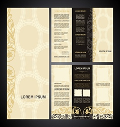 brochure template vintage light vector image