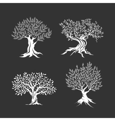 Olive trees silhouette icon set isolated vector image