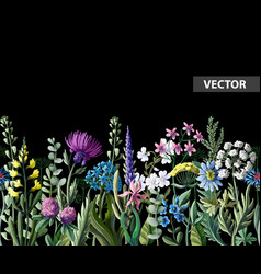 Seamless border of wild flowers vector