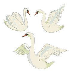 Swan symbol set vector