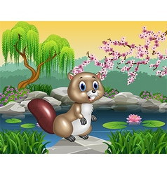 Cartoon beaver posing on the rock vector image vector image
