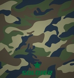 camouflage fabric pattern shape vector image