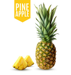 realistic pineapple vector image