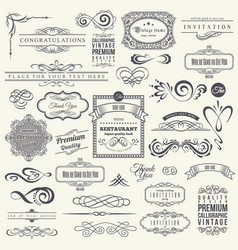 calligraphic design elements and frames vintage vector image