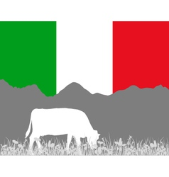 Cow alp and italian flag vector image