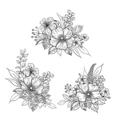 Hand drawn flowers bunches set vector