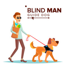 blind man person with pet dog companion vector image