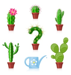 Cactuses and Watering Can vector image vector image
