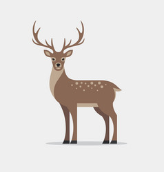 Deer in flat style vector