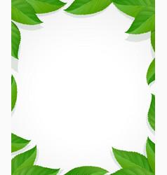 Leaves frame green decoration vector