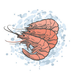 Red unpeeled shrimps in vector