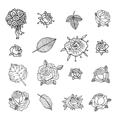 Rose set on a white background vector image