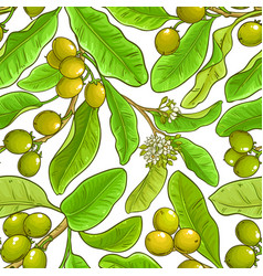 shea branches pattern on white background vector image
