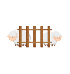 sheeps animals wooden fence farm vector image