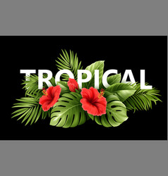 exotic tropical hibiscus flowers and monstera vector image