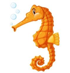 Seahorse in orange color vector