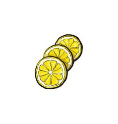 sketch cartoon colorful ripe lemon slices vector image