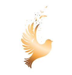 Spirit dove over white vector