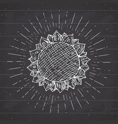 sunflower sketch vintage label hand drawn grunge vector image