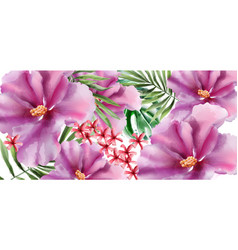 tropic flowers watercolor beautiful exotic vector image