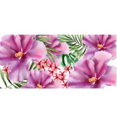 tropic flowers watercolor beautiful exotic vector image