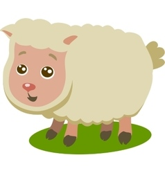 Baby Sheep Isolated vector image vector image